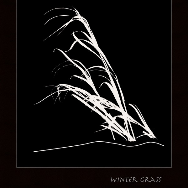 Winter-grass-2-frm-dark,-near-Stoufville,-Ontario,-February-2015_DSC4417
